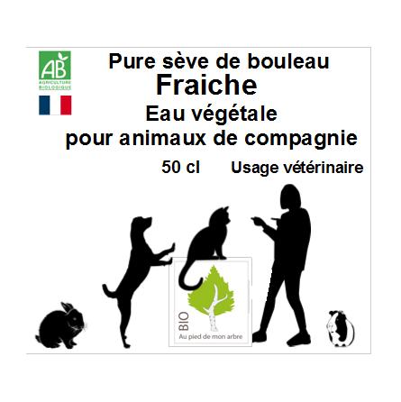 En frais 6 bouteilles en verre de 50 cl de Sève de bouleau bio pour animaux domestiques